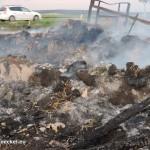 Brandstiftung in Hainburg | Foto: DerGloeckel.eu