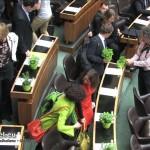 GRÜNE Einzug Nationalrat 29.10.2013 | Szenenbild: DerGloeckel.eu
