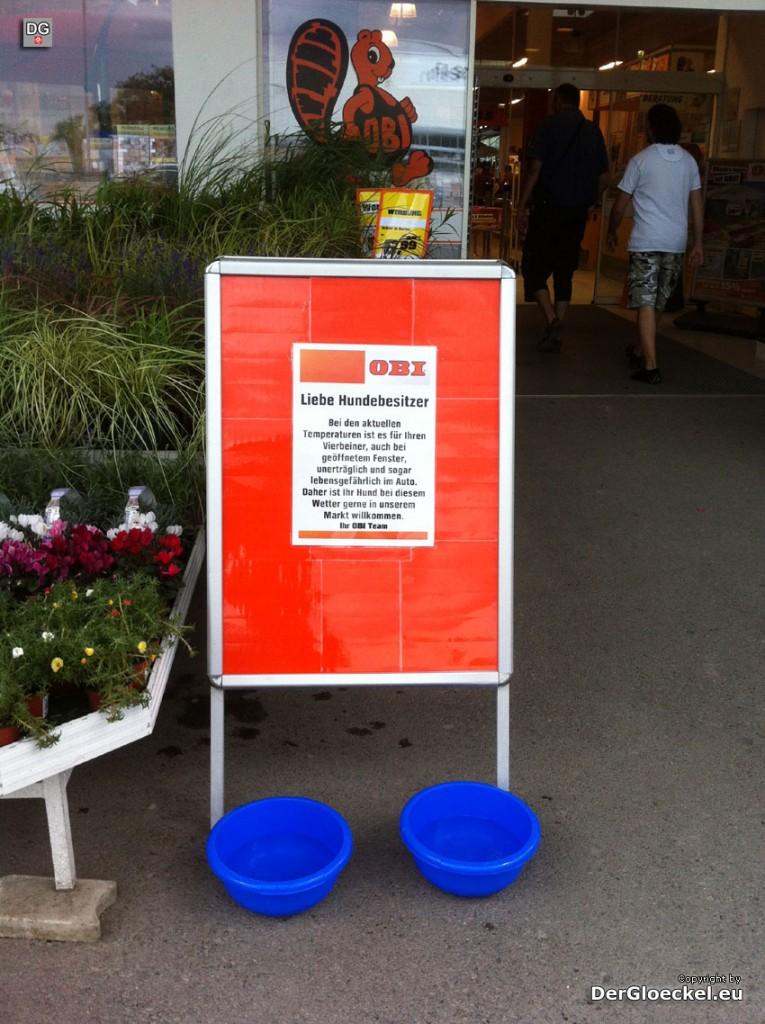 OBI Bad Deutsch-Altenburg richtete Wasserstation für Hunde ein | Foto: DerGloeckel.eu